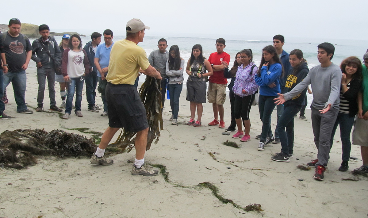 Marine Biology / Environmental Club