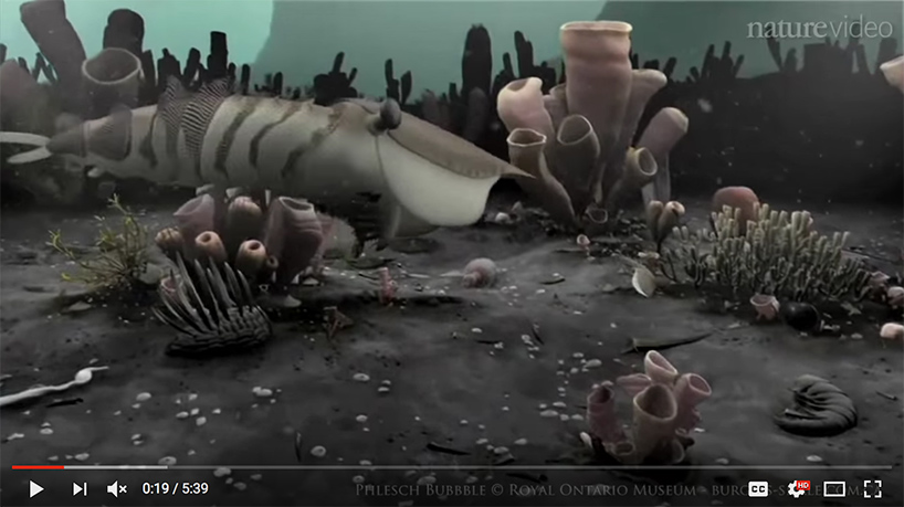 "screenshot of ""Gentle Giants of the Cambrian"" video"